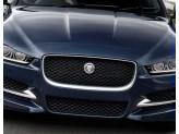 Решетка радиатора для Jaguar XE черная полир. нерж. сталь