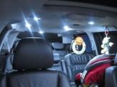 Светодиодные фонари Premium LED в салон