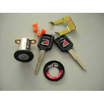 Личинка замка с 2-мя ключами для крышки TS,TS-I,TS-II  (только для крышек производителя TopUp)